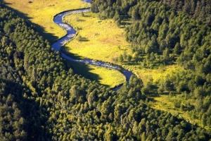 Rzeka Rurzyca