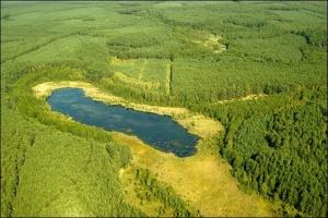 Jezioro Żabie